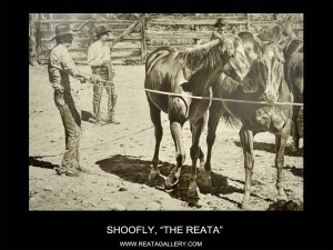 "Shoofly, ""The Reata"" (The Reata)"